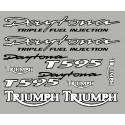 Pegatinas Triumph Daytona T595 con borde negro