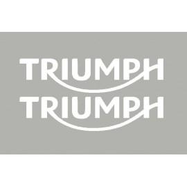 2 adesivi TRIUMPH 2014