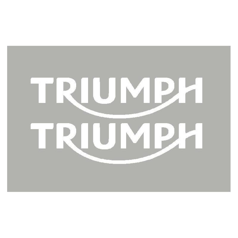 2 adesivi TRIUMPH 2010...