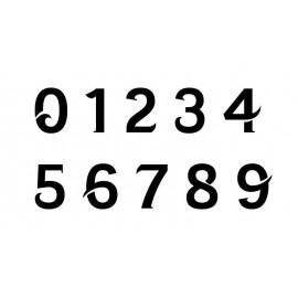 3 Números de la raza 8 cm oficiales US