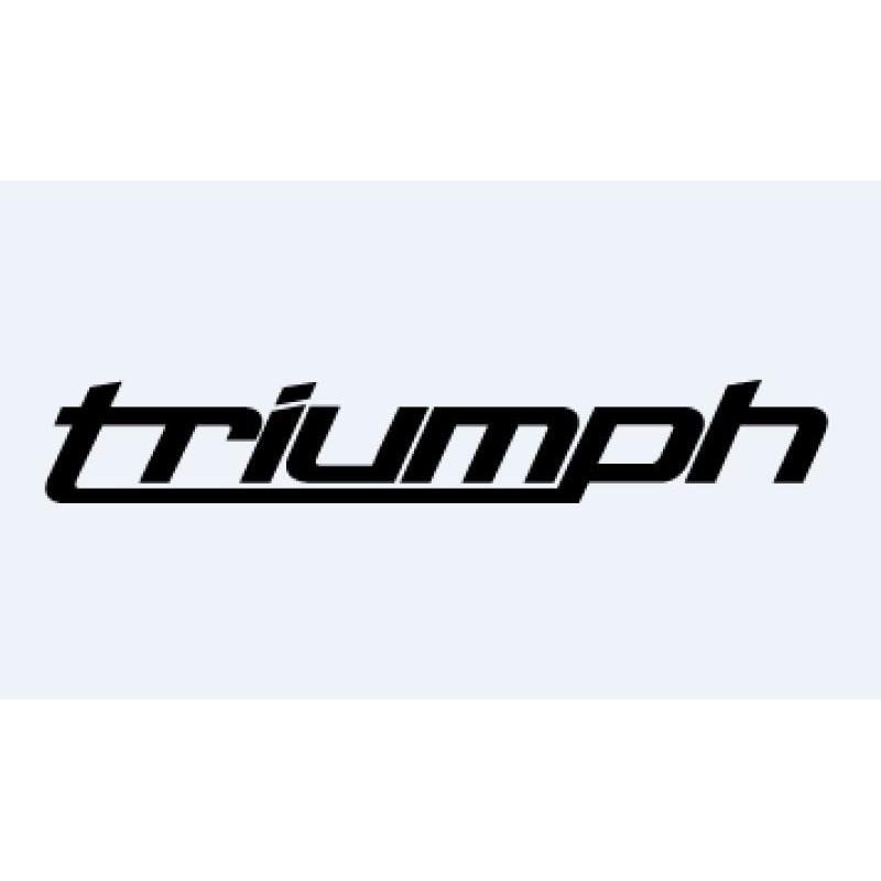 2 stickers TRIUMPH 2010 à